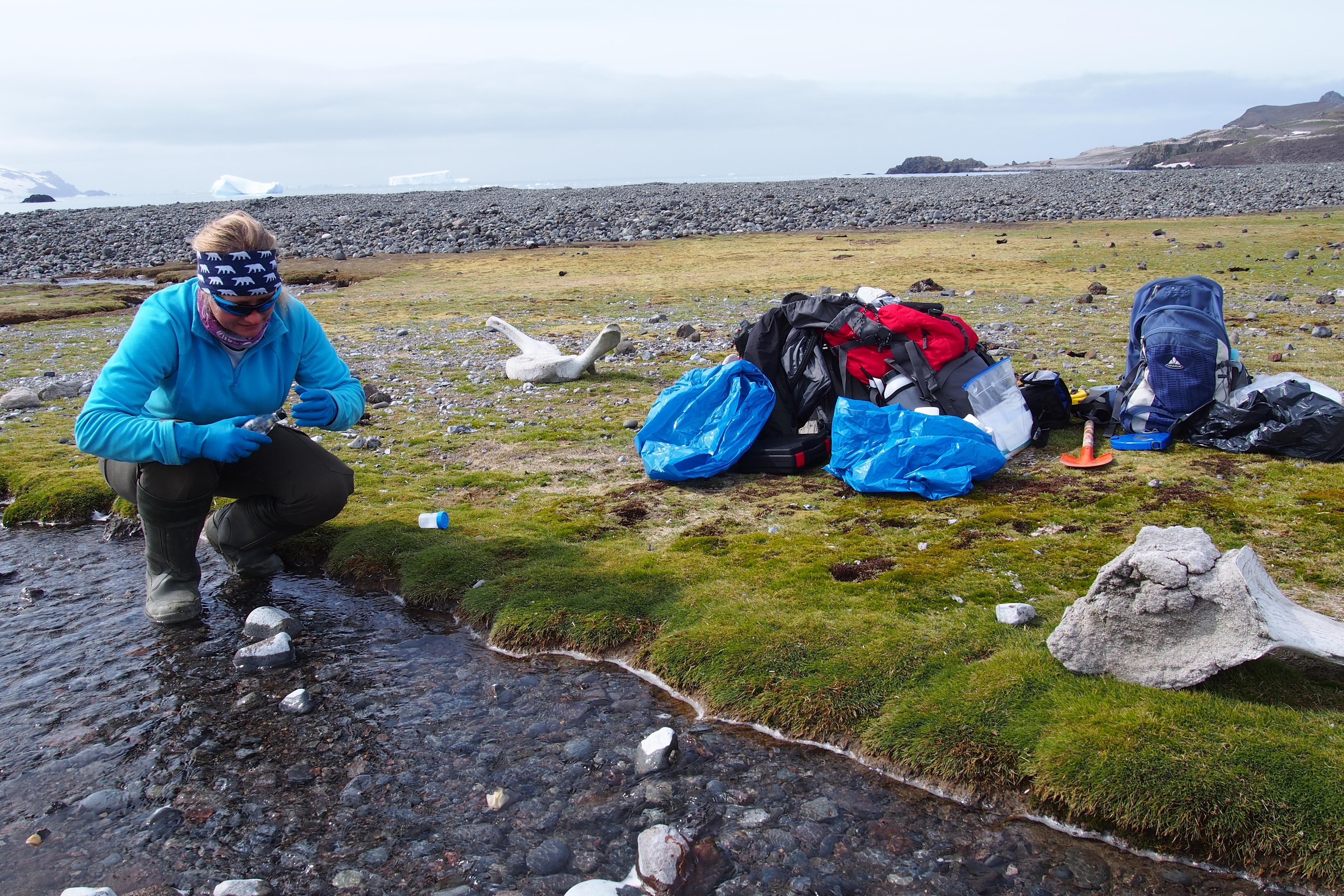 Pobór próbek wody ze Strumienia Ornitologów | Hydrological measurements
